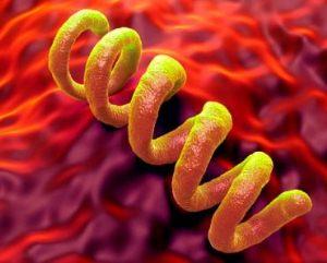 Пройдет ли сифилис сам