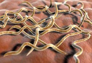 Поздний скрытый сифилис